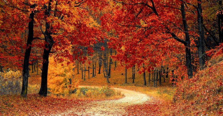 TOP TIPS FOR SELLING YOUR HOME THIS AUTUMN